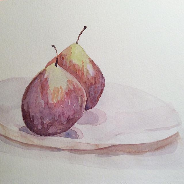 Another week, more figs. Layering translucent films of water to achieve something more...figgy. Not there yet but we'll get there. God it's fun to try! @artestart #ArtEst #watercolor #watercolour #stilllife #figjam #notreally
