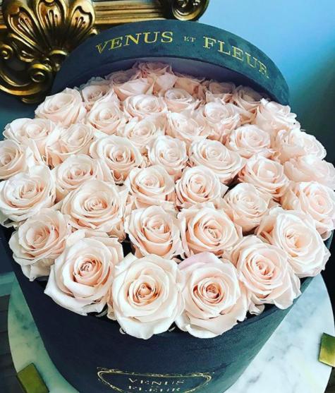 Venus ET Fleur - @venusetsleur
