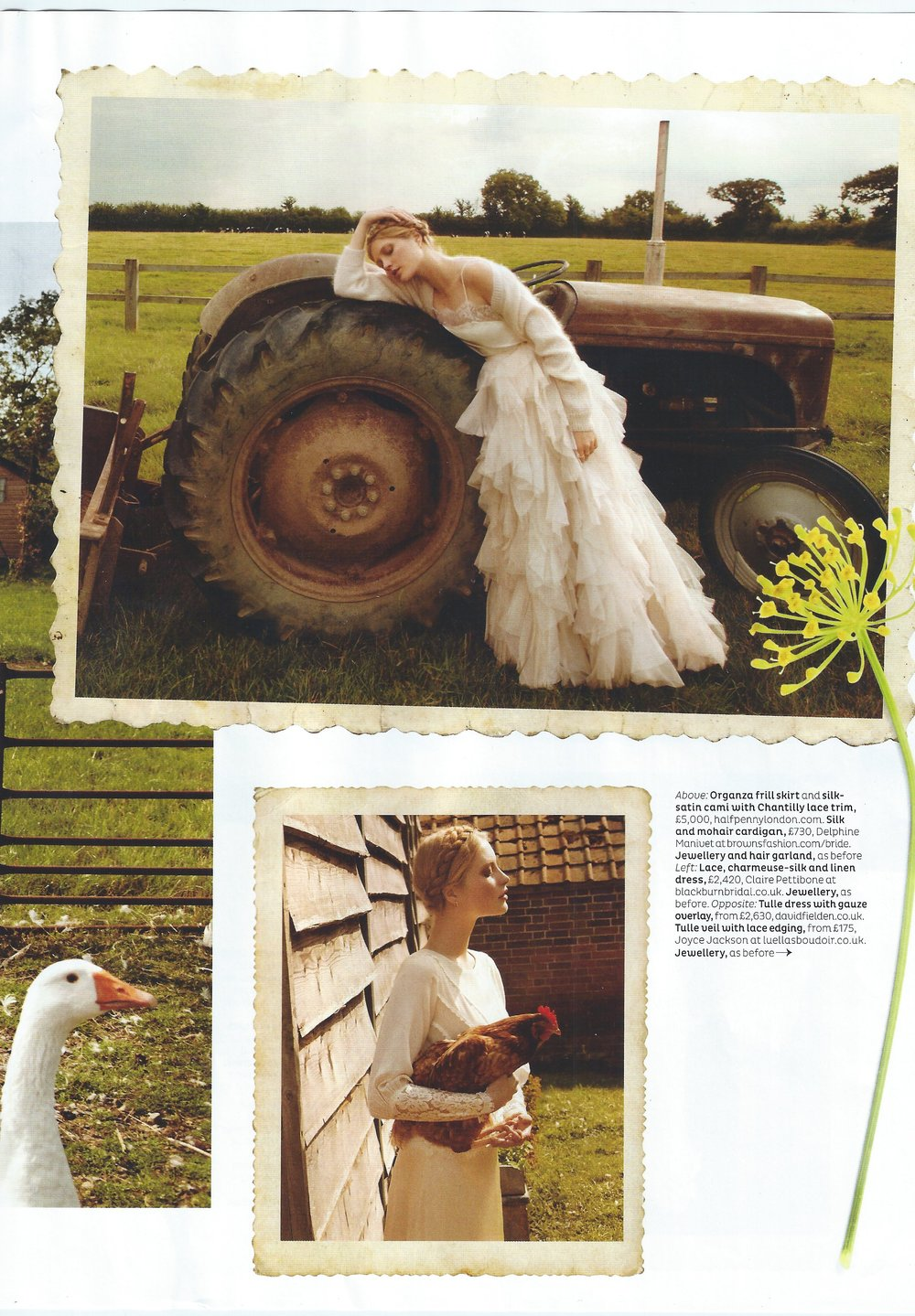 4B. BRIDES FEATURE.JPG