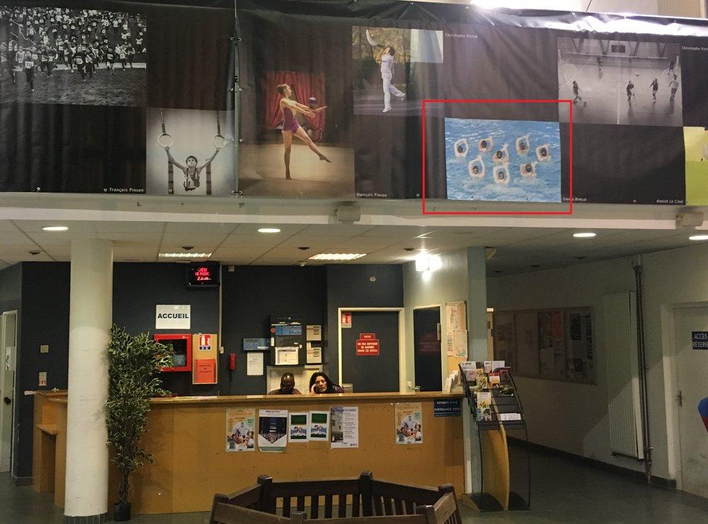 """Novembre 2018 - Exposition 'Vendanges en Extérieur"""" au Centre Omnisport de Massy (91)"""