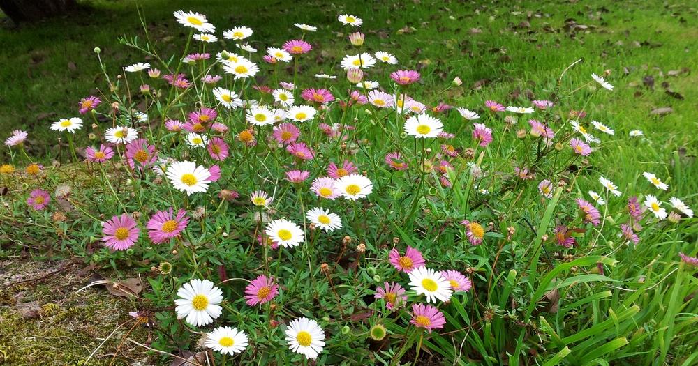 2011-09-03 14.05.10.jpg