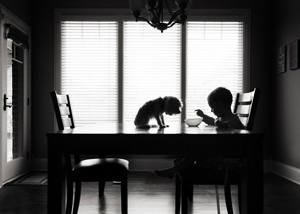 """Клуб завтраков ©Karen Osdieck, США(1 место в категории """"Силуэт"""", первая половина конкурса)"""
