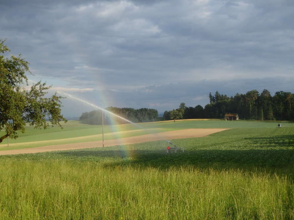 """Wunderschöne """"selbstgemachte"""" Regenbogen laden zum Fotografieren ein"""