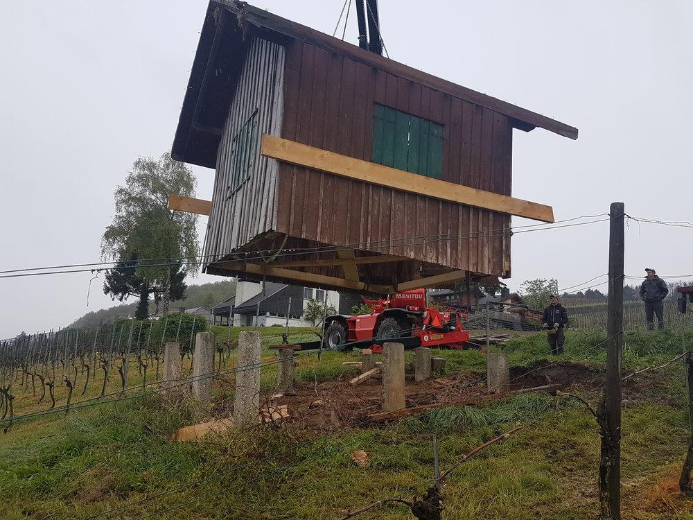 Das Rebhüsli wird mit dem Manitou weggehoben, damit das Fundament erneuert werden kann...