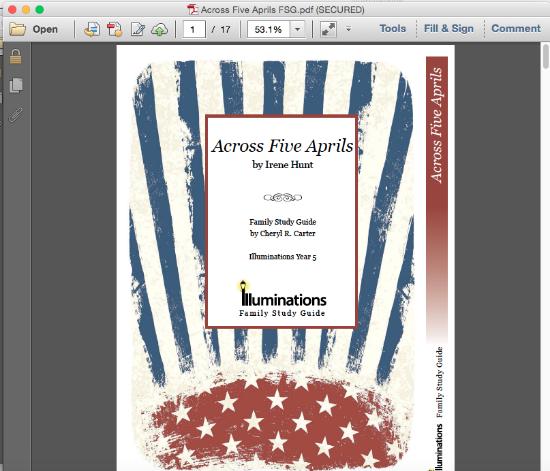Illuminations Literature Guide