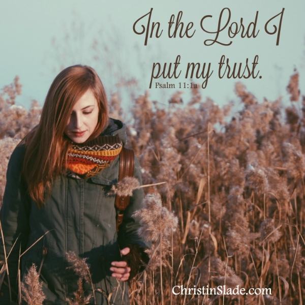In the Lord I put my trust. Psalm 11:1a