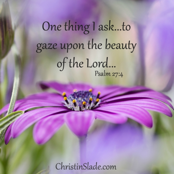 One thing I ask...to gaze upon the beauty of the Lord. -Psalm 27:4