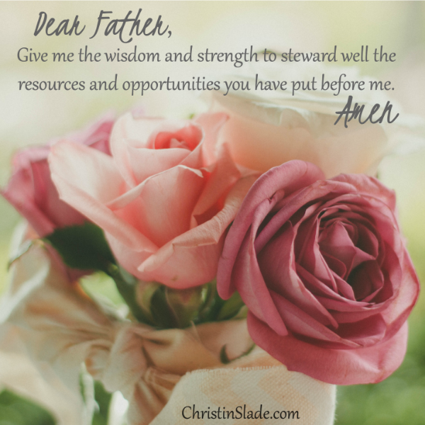 Dear Father, Give me wisdom and strength to steward well the resources and opportunities you have put before me. Amen.
