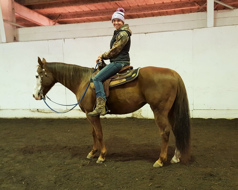 Boo Back Under Saddle
