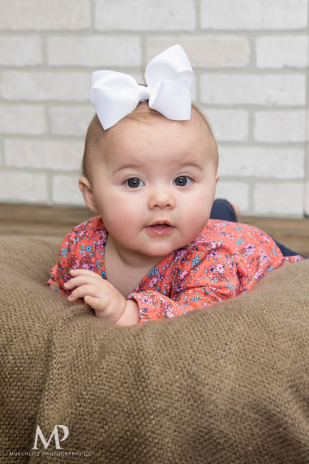 6-month-portraits-baby-photographer-columbus-ohio-gahanna-muschlitz-photography-006.JPG