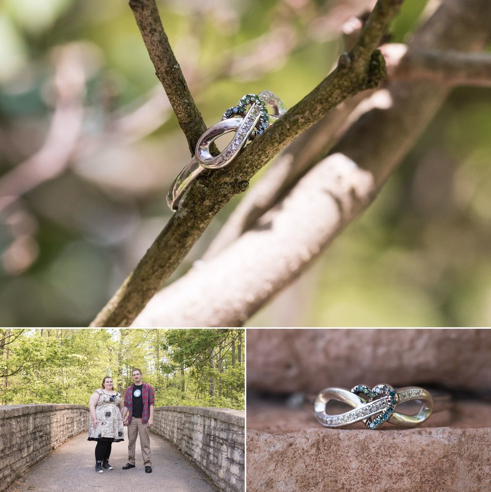 inniswood-metro-gardens-engagement-portrait-session-columbus-westerville-ohio-muschlitz-photography-005.JPG