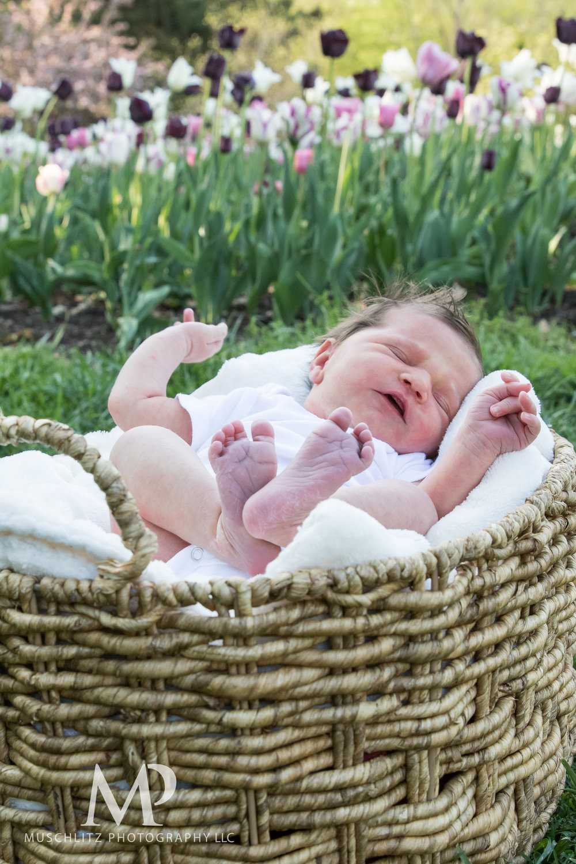 newborn-baby-family-portrait-session-spring-inniswood-metro-gardens-columbus-ohio-009.JPG