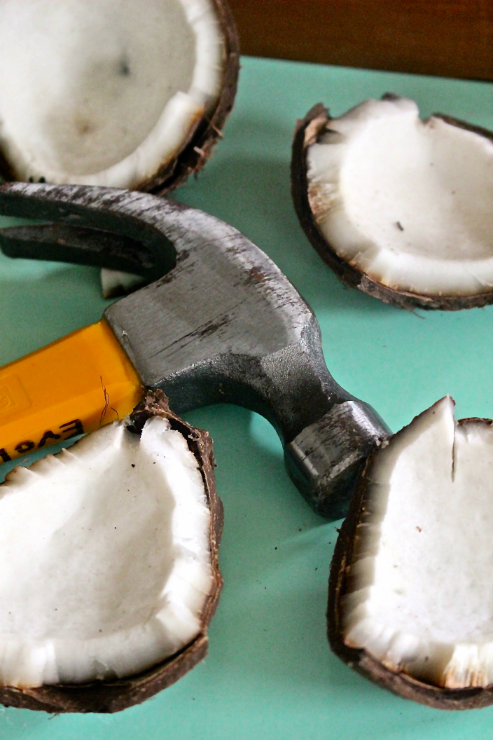 Coconut hammer.jpg
