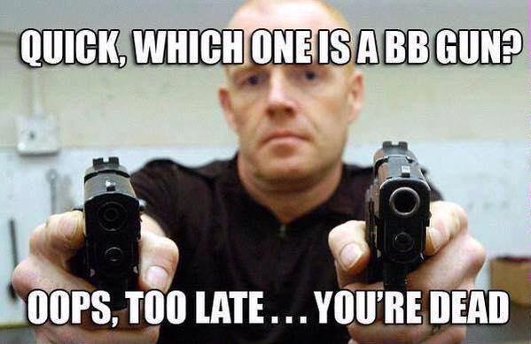 Gun or BB Gun.jpg