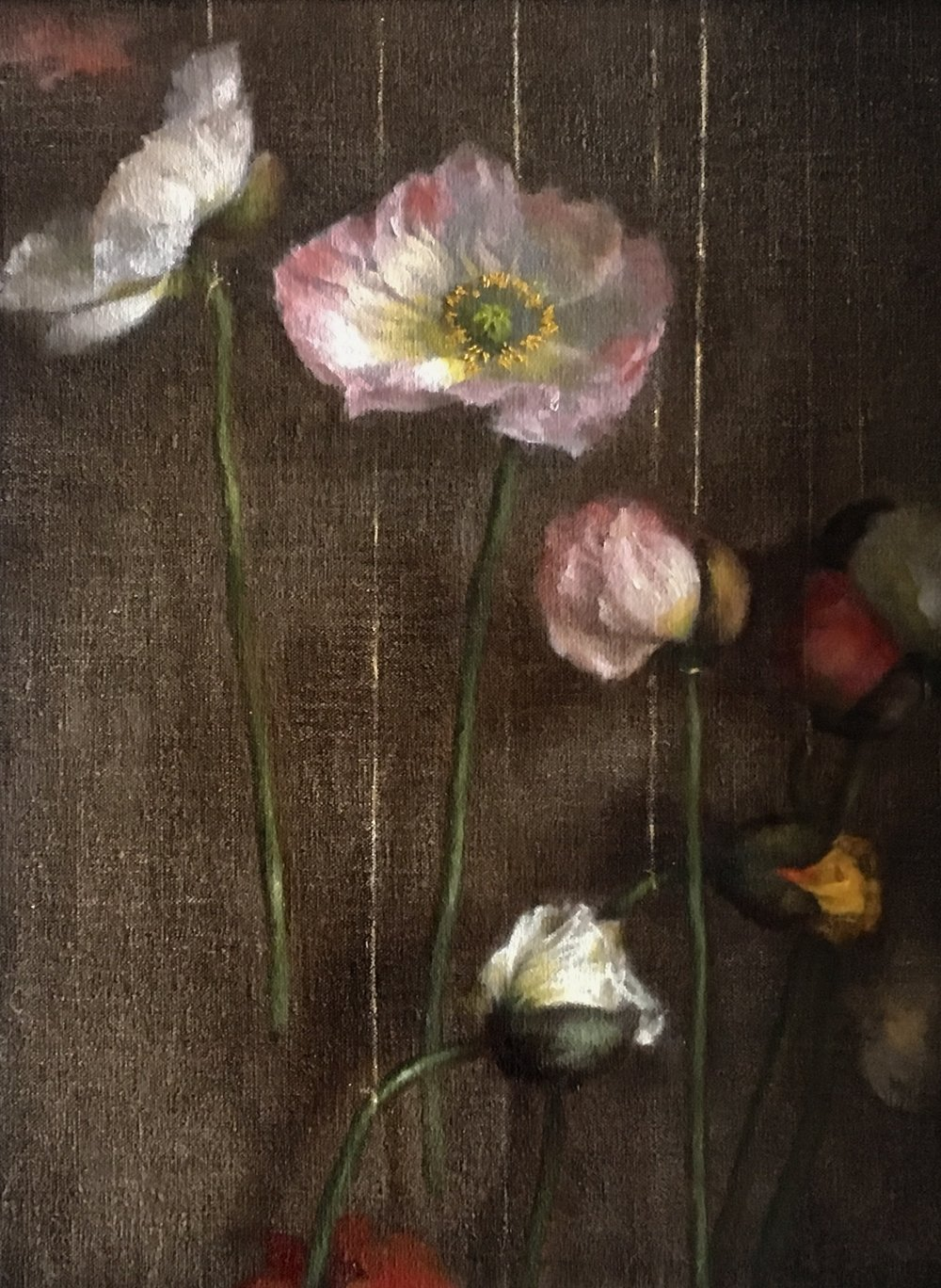 Hanging Poppies