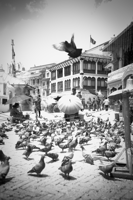 Nepal G2-5.jpg