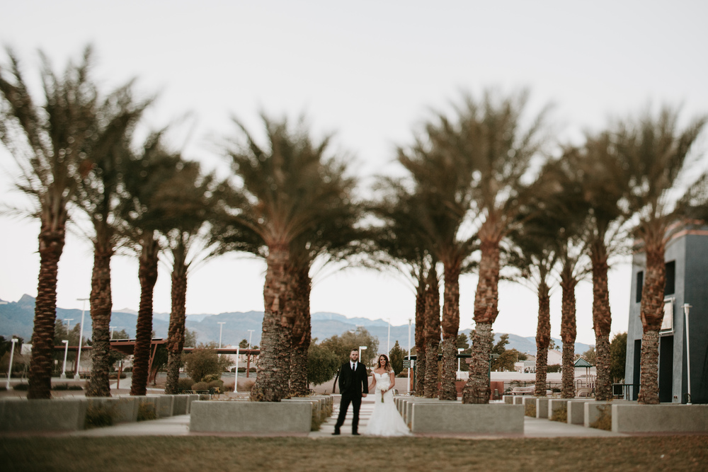palm tree bride and groom