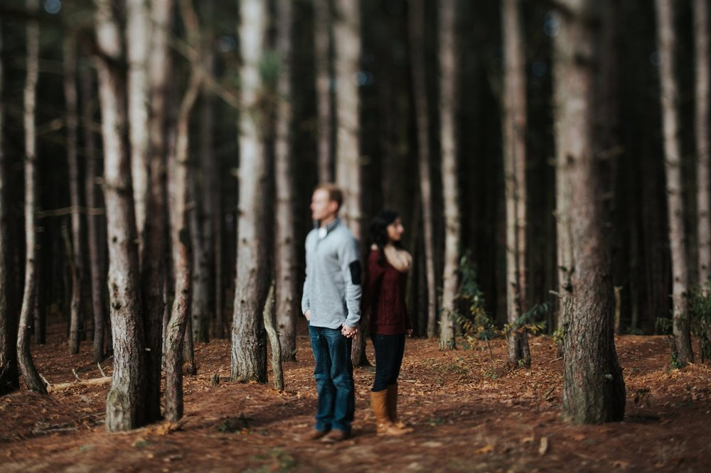 upper peninsula forrest engagement session