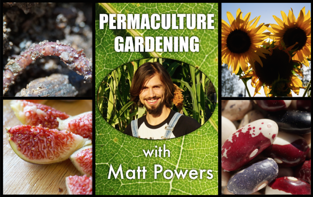 Join Permaculture Gardening with Matt Powers Today & Start Planning your Best Garden Ever!  (click the image)