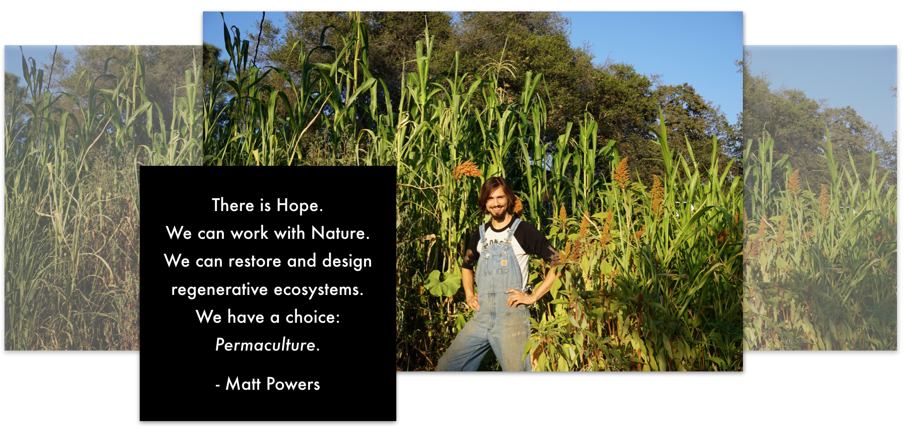 The Permaculture Student