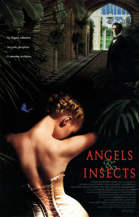 angels_and_insects.jpg