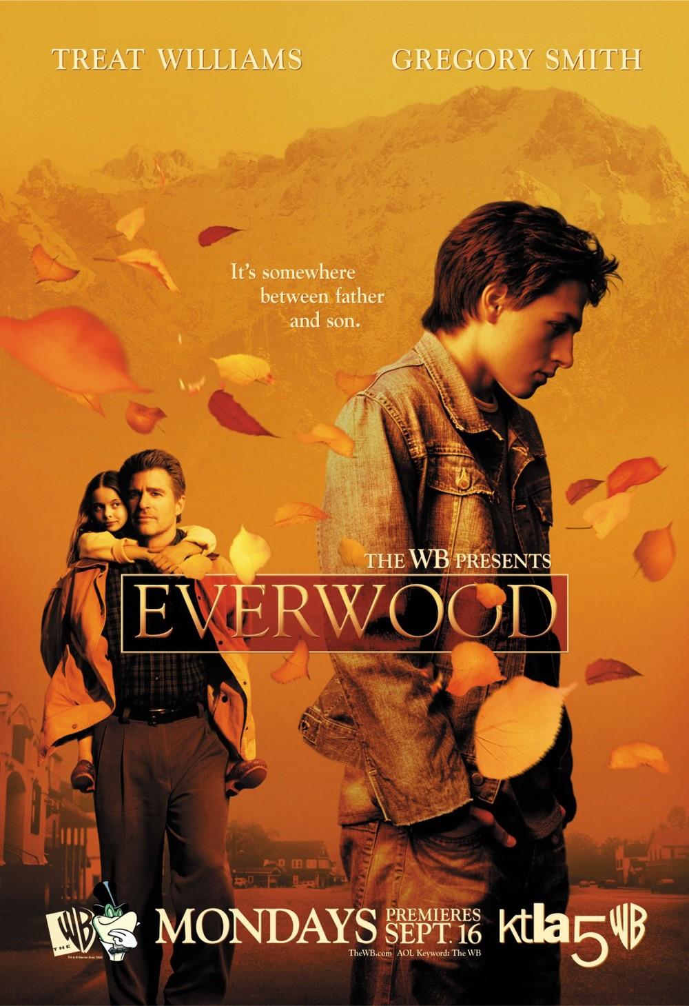 everwood_xlg.jpg