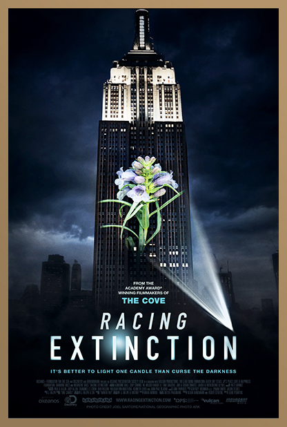RACING EXTINCTION 5.jpg