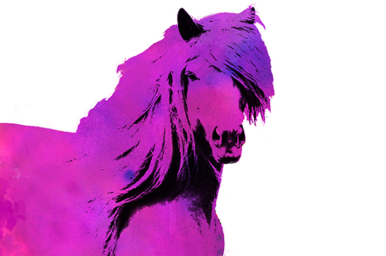 horse_of_many_colors_pink.jpg