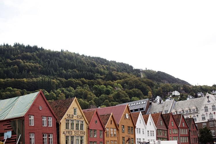 JohansenBlog_0004