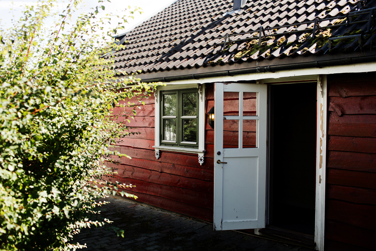 JohansenBlog_0012