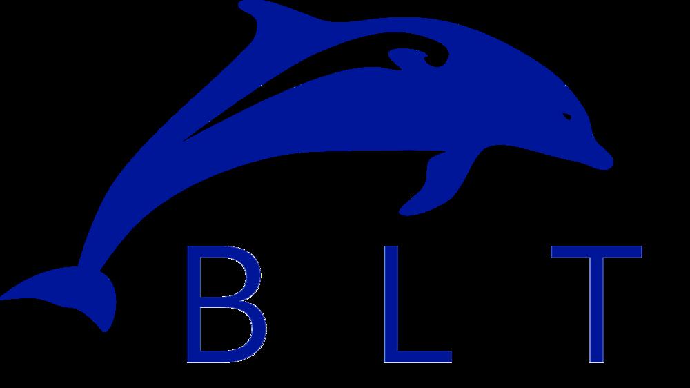 BLT dolphin.jpg