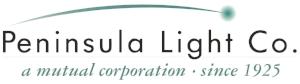 penlight-logo_logo.jpg