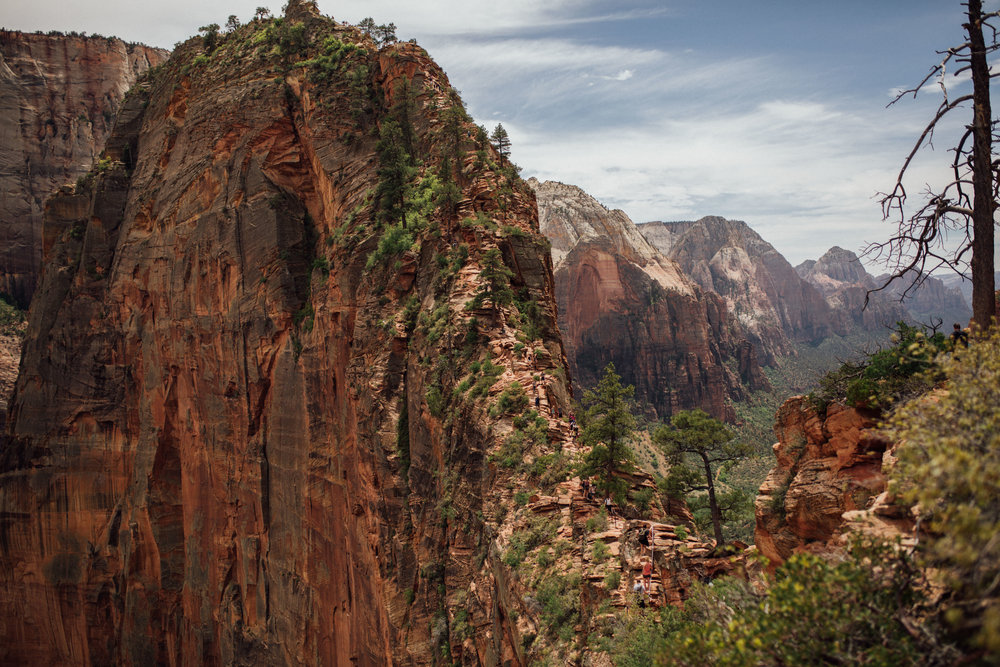 Zion National Park Angel's Landing Trail - Nature Photography