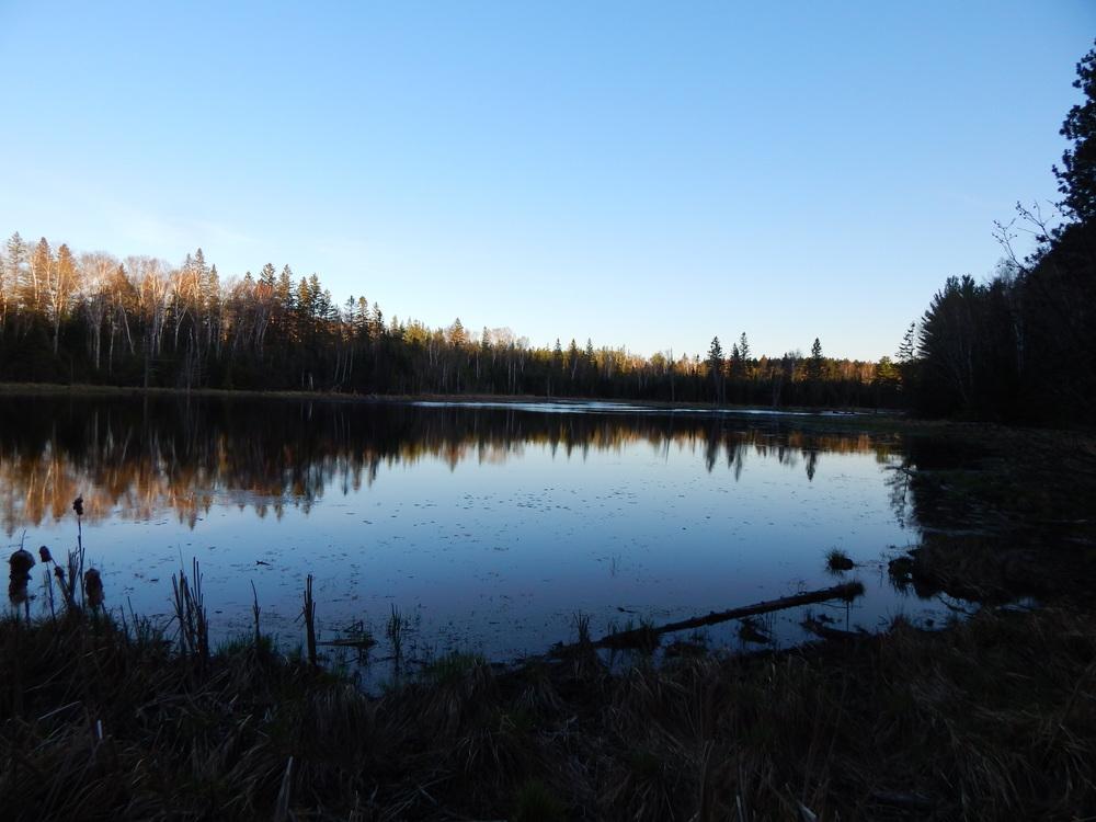 No Name Lake #7