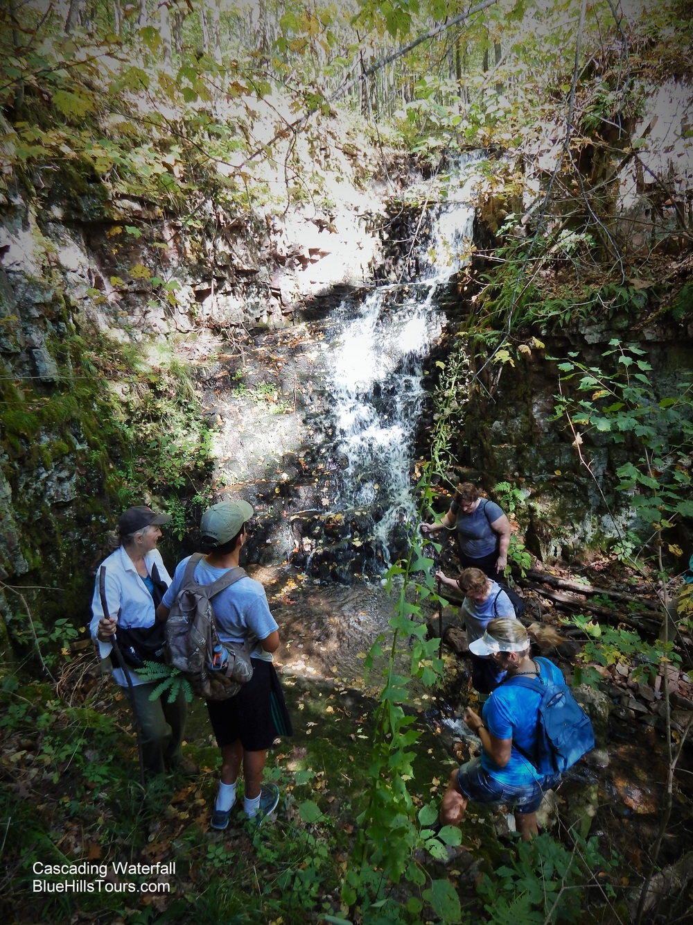 Cascading Waterfall Leaf It 2015.jpg