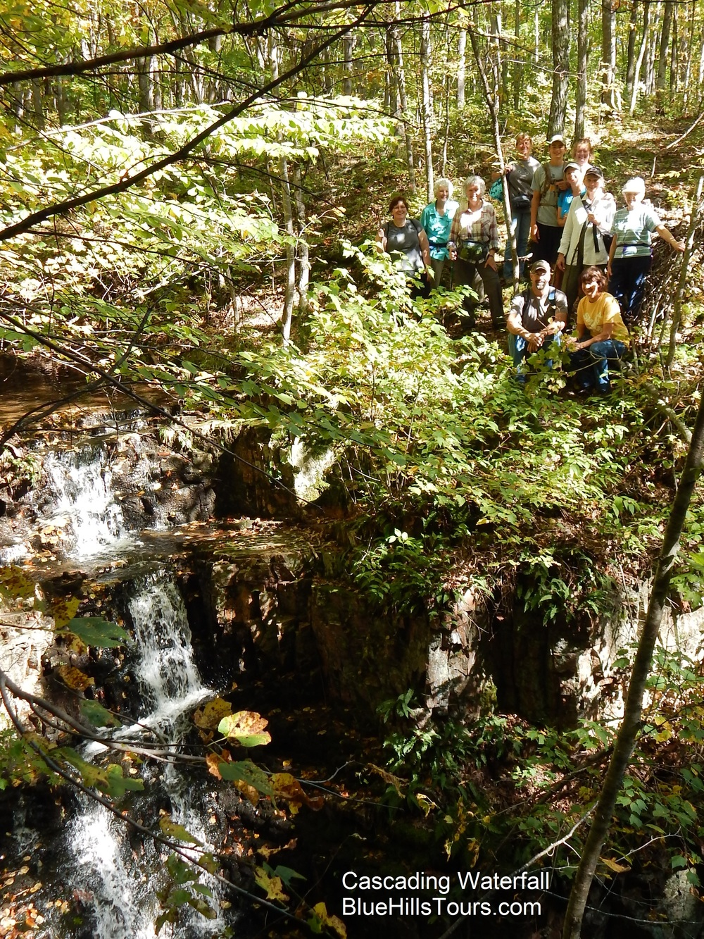 Group Cascading Waterfall Leaf it 2015.jpg