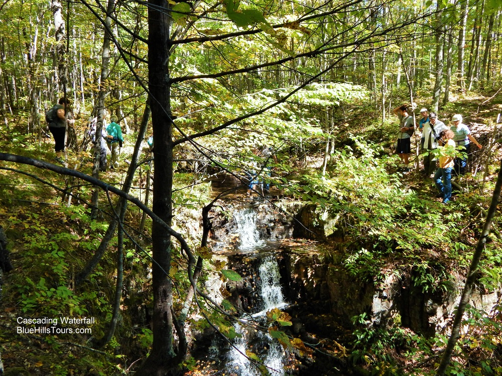 Going to the Group Cascading Waterfall Leaf it 2015.jpg