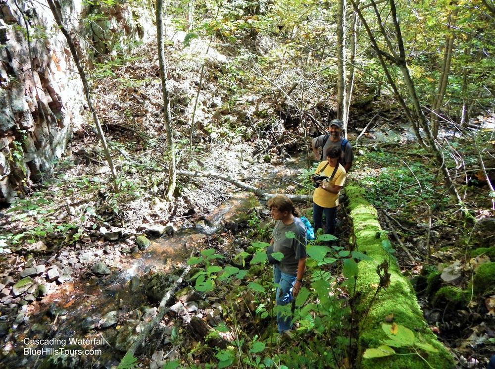 Log Cascading Waterfall Leaf It 2015.jpg