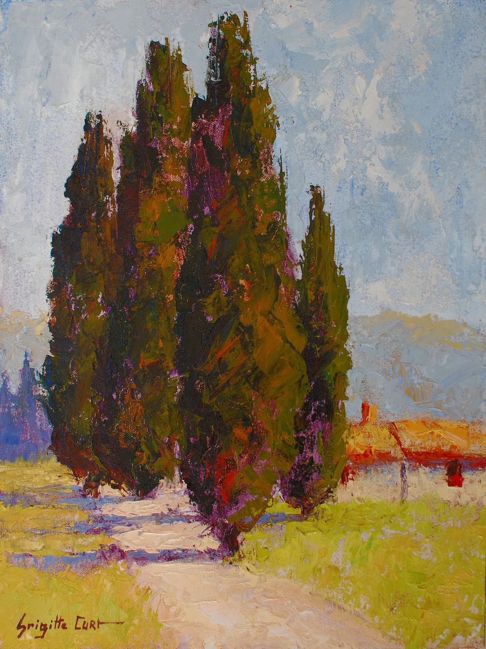 Cypress in Provence