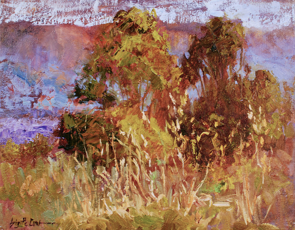 Golden Grass      12 x 16.jpg