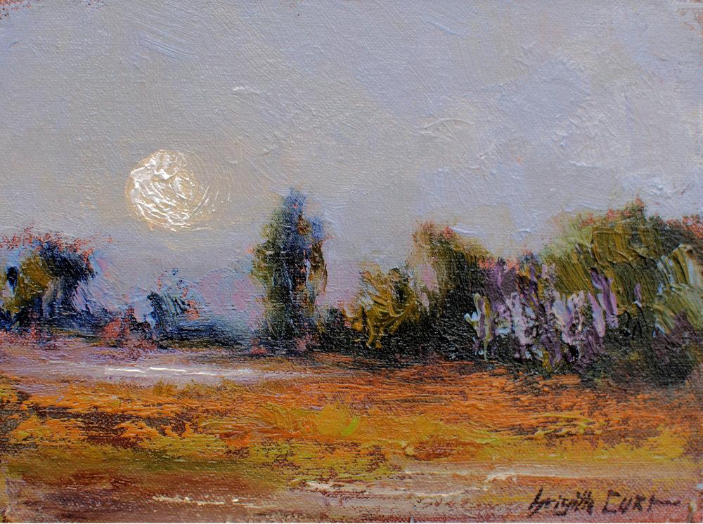 Moon Over the Pond 6 x 8.jpg