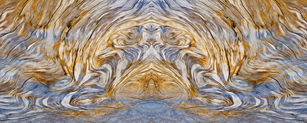 Beach Troll, Photograph, Earl Olsen
