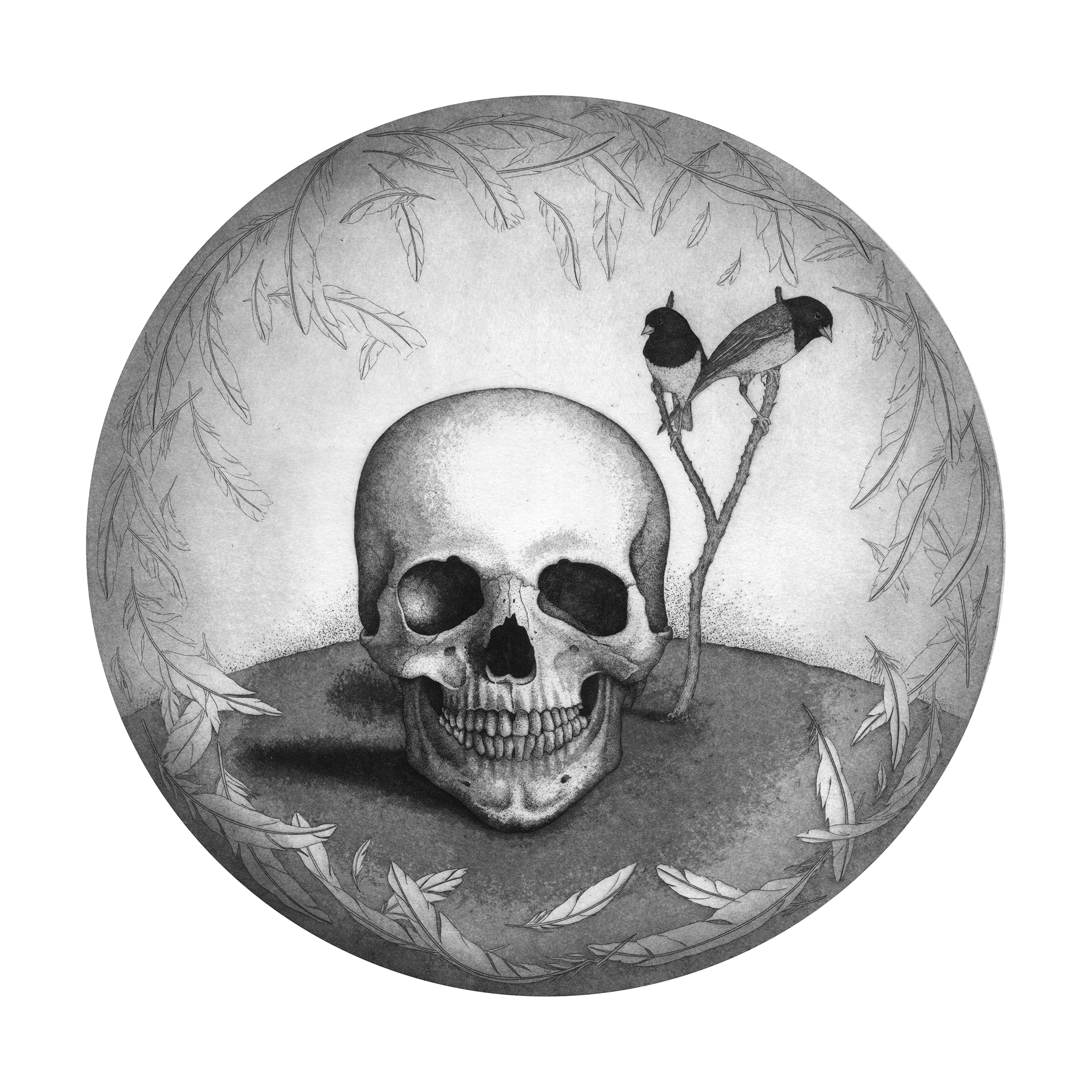 Cranium, Print, Briony Morrow Cribbs