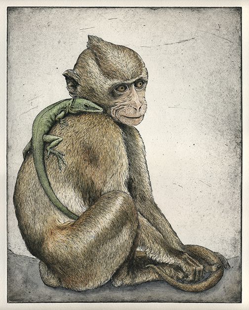 Monkey, Hand Tinted Etching, Briony Morrow Cribbs
