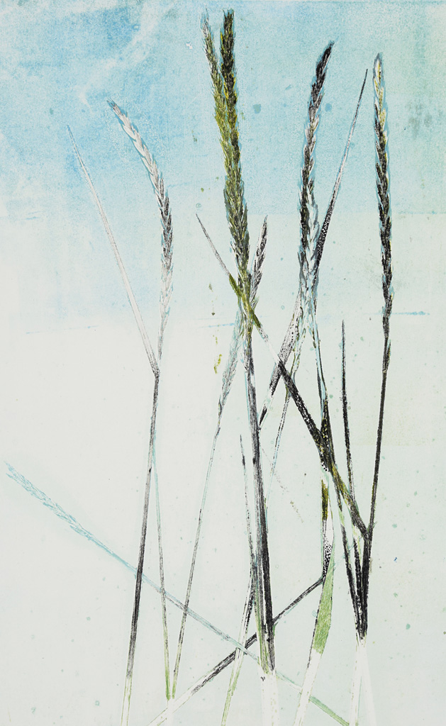 Grasses, Monoprint, Francy Blumhagen