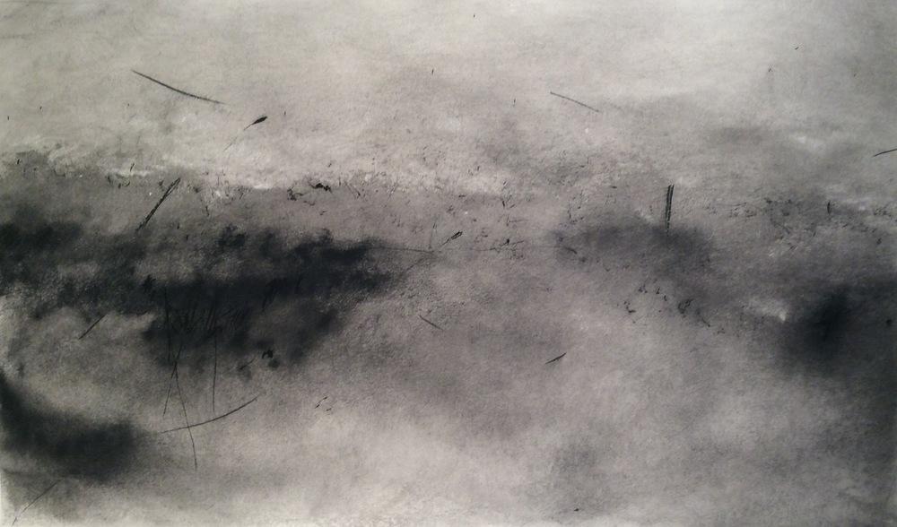 Susan Burgers, Field, 48 x 17