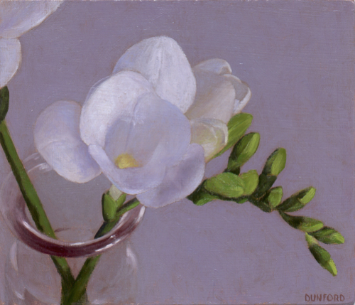 Carolyn Dunford, Freesia Series No. 6, oil, 7x6