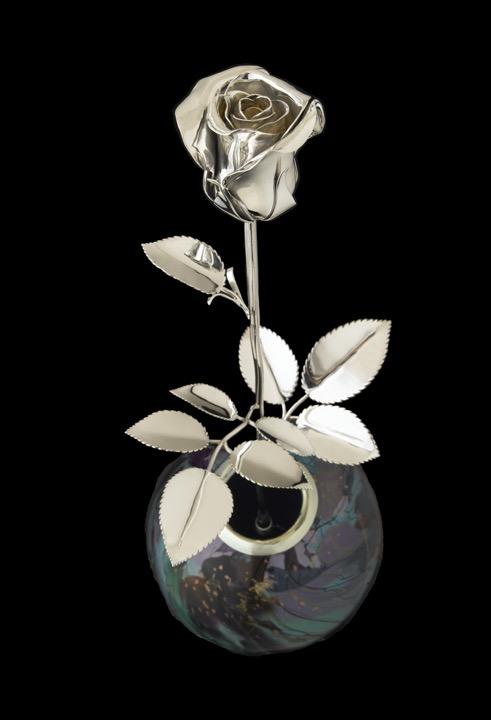 Stark Rose 2_00066x.jpg