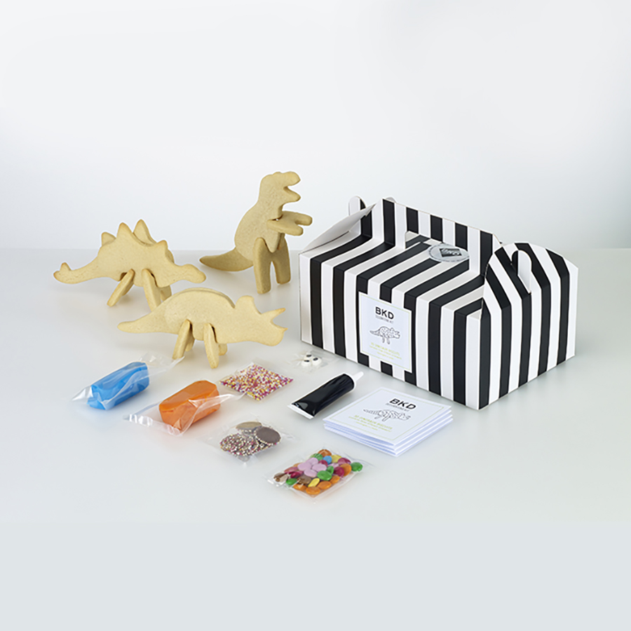 BKD 3D Dinosaur Biscuit Decorating Kit NOTHS.jpg