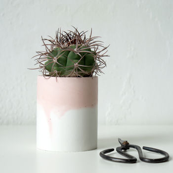 normal_pink-ombre-concrete-planter.jpg